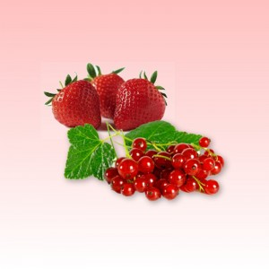 Strawberry - Red Currant