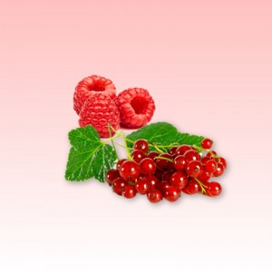 Raspberry - Red Currant